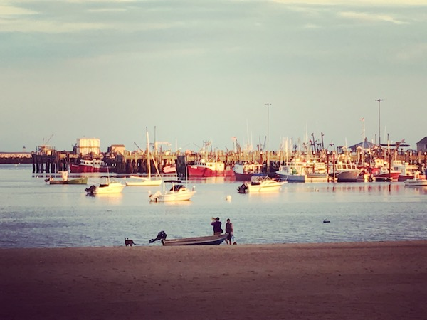 Provincetown Harbor Pepe's Wharf